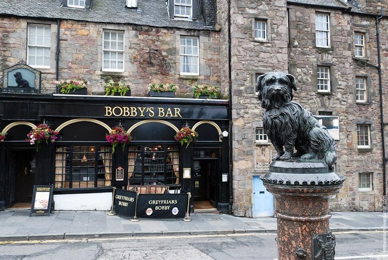 шотландский Бобби фото
