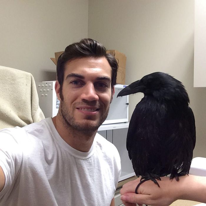 28-Evan-Antin-Эван Антин-ветеринар