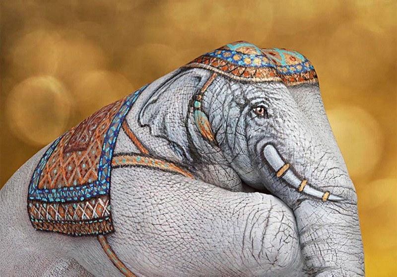 слон Гвидо Даниэле