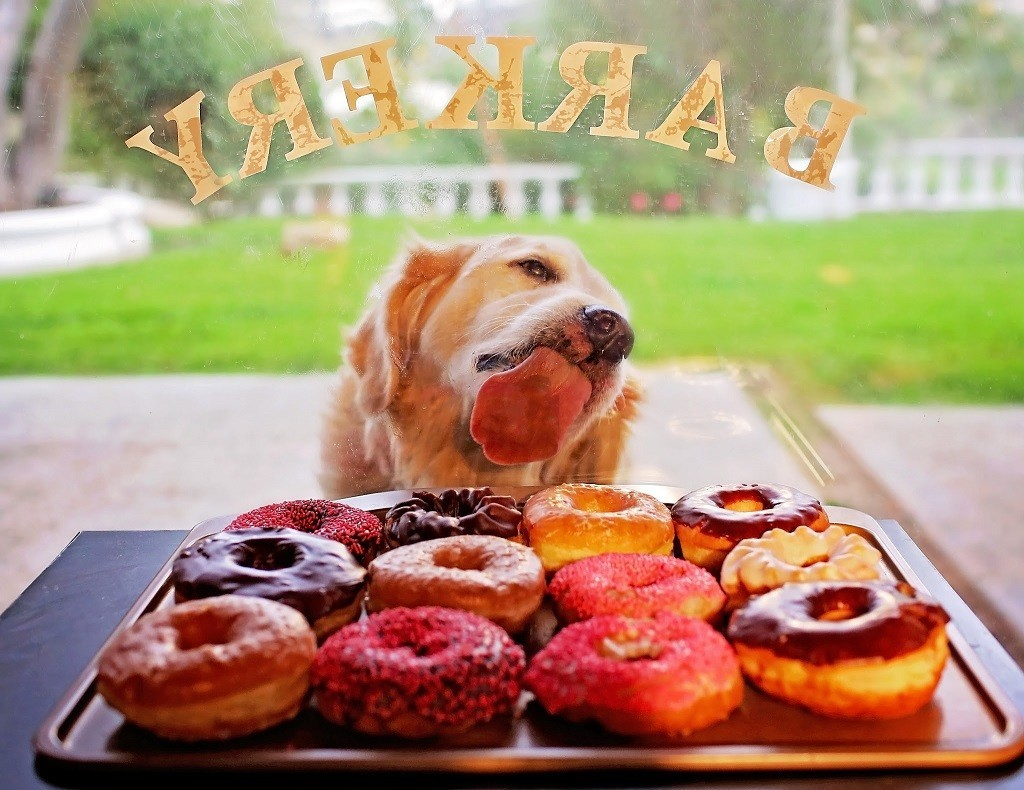 реклама пончиков фото