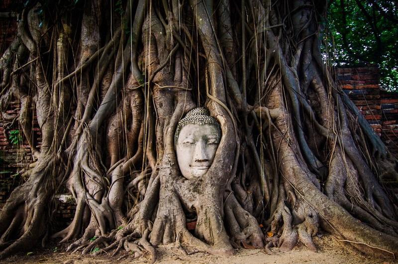лицо Будды-фото