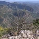 Вид с горы Монтсеррат, Испания
