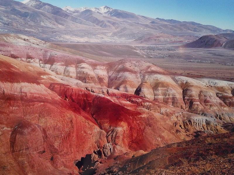 цветные скалы фото Кош-Агач