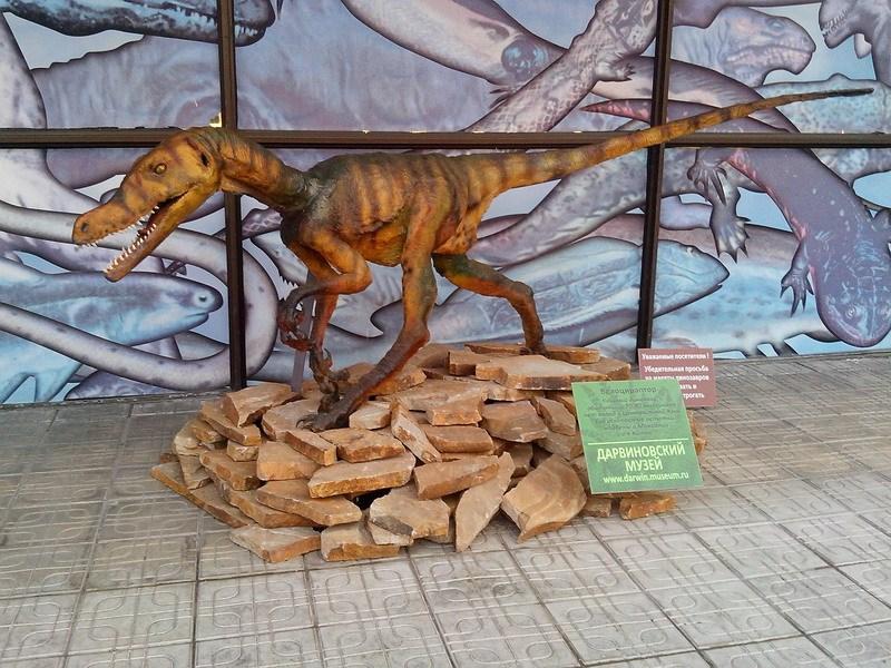 динозаврик фото