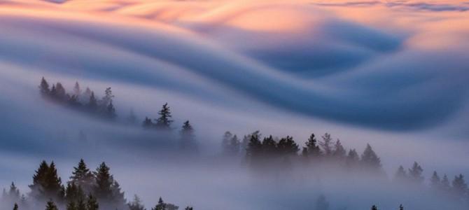 Туман – фото из Сан-Франциско