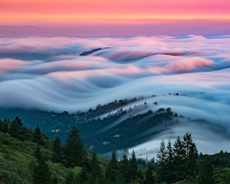 туман фото3