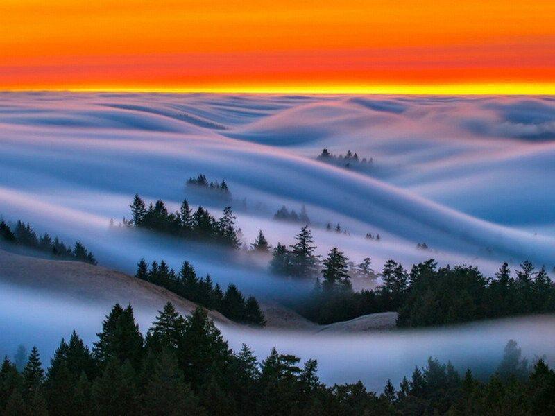 туман фото5