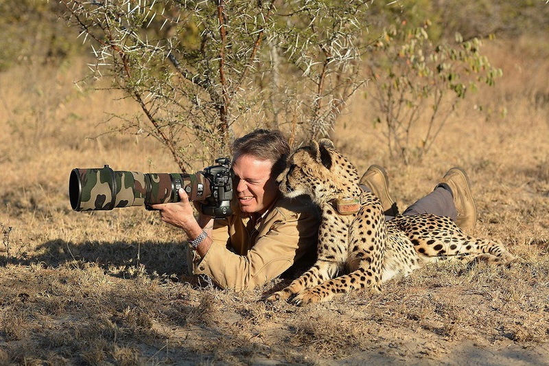 фото фотографа и гепарда