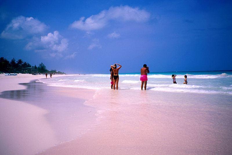 розовый пляж на Багамских островах фото