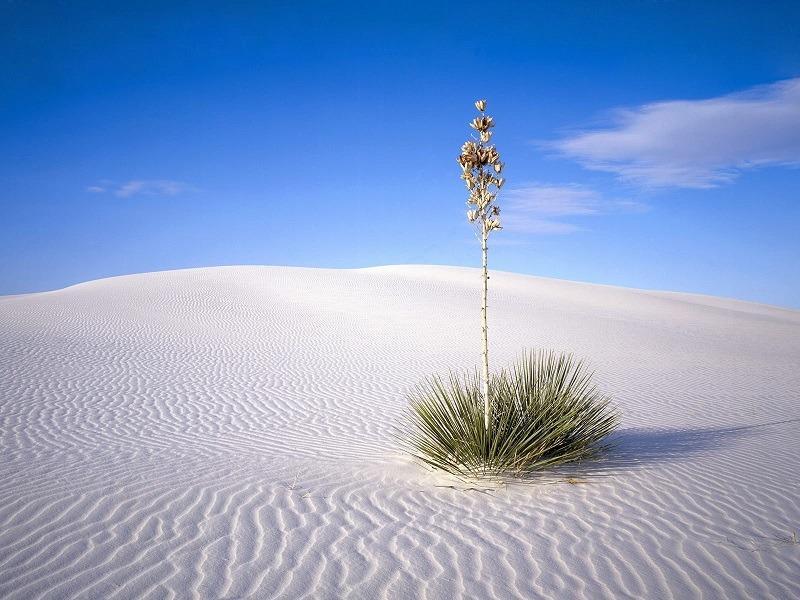 Фарфоровая пустыня -фото